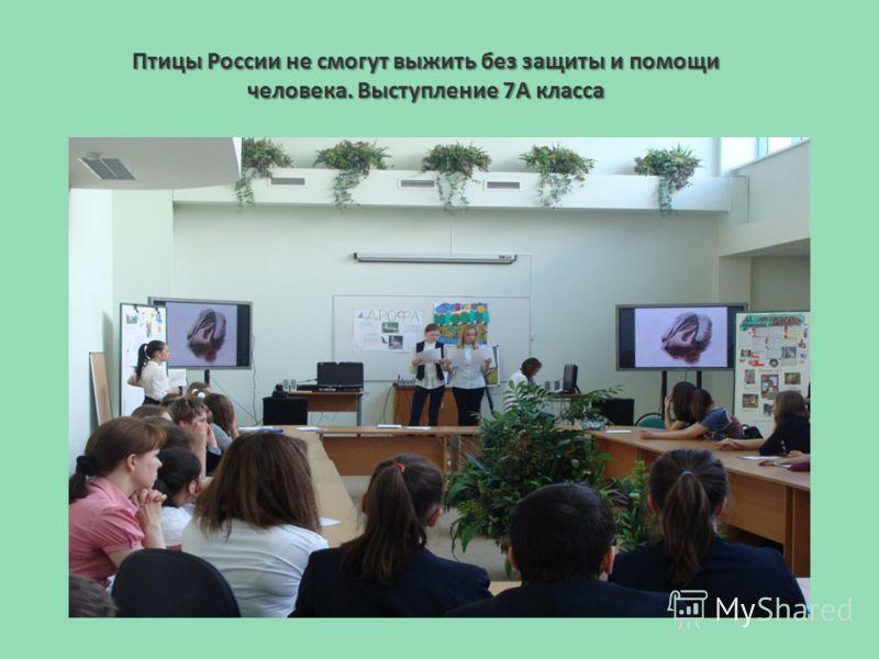 Птицы России не смогут выжить без защиты и помощи человека. Выступление 7А класса