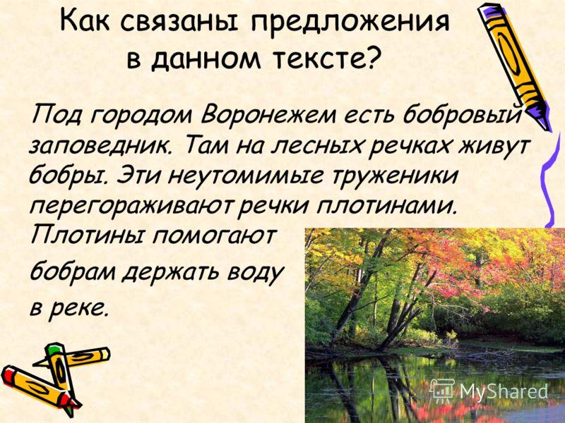 Как связаны предложения в данном тексте? Под городом Воронежем есть бобровый заповедник. Там на лесных речках живут бобры. Эти неутомимые труженики перегораживают речки плотинами. Плотины помогают бобрам держать воду в реке.