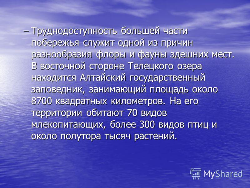 –Труднодоступность большей части побережья служит одной из причин разнообразия флоры и фауны здешних мест. В восточной стороне Телецкого озера находится Алтайский государственный заповедник, занимающий площадь около 8700 квадратных километров. На его