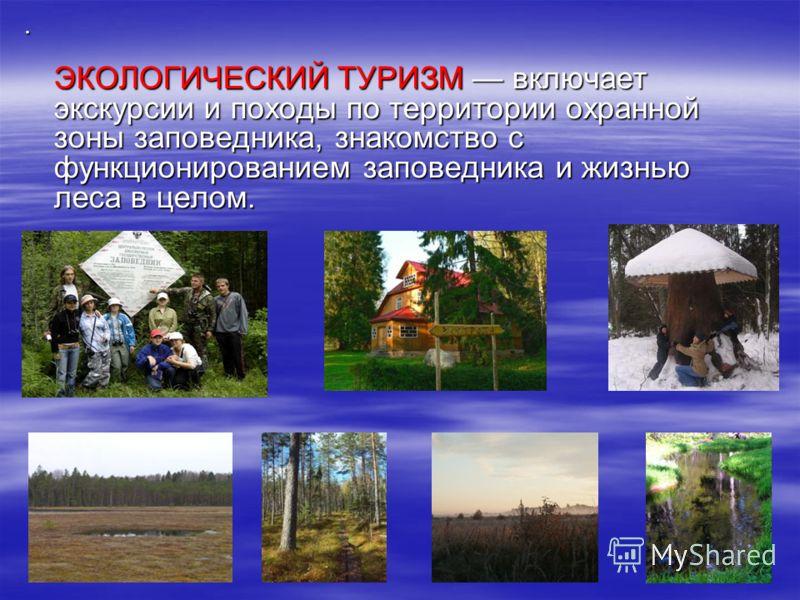 . ЭКОЛОГИЧЕСКИЙ ТУРИЗМ включает экскурсии и походы по территории охранной зоны заповедника, знакомство с функционированием заповедника и жизнью леса в целом.