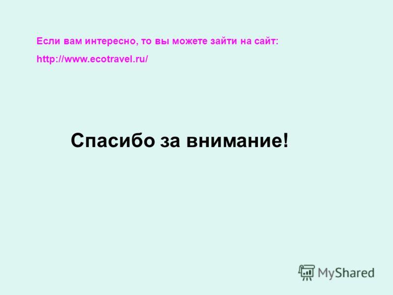 Если вам интересно, то вы можете зайти на сайт: http://www.ecotravel.ru/ Спасибо за внимание!