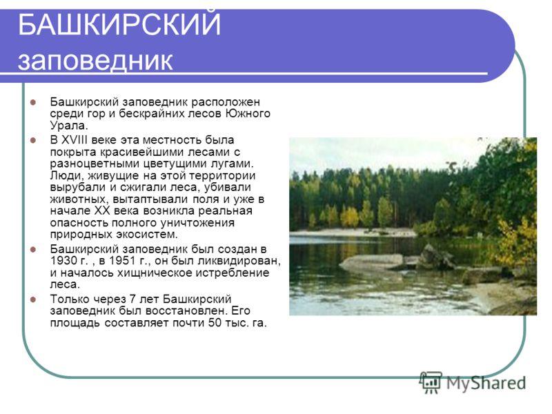 БАШКИРСКИЙ заповедник Башкирский заповедник расположен среди гор и бескрайних лесов Южного Урала. В XVIII веке эта местность была покрыта красивейшими лесами с разноцветными цветущими лугами. Люди, живущие на этой территории вырубали и сжигали леса,