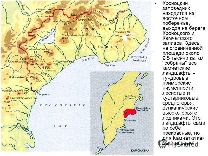Кроноцкий заповедник находится на восточном побережье, выходя на берега Кроноцкого и Камчатского заливов. Здесь, на ограниченной площади около 9,5 тысячи кв. км