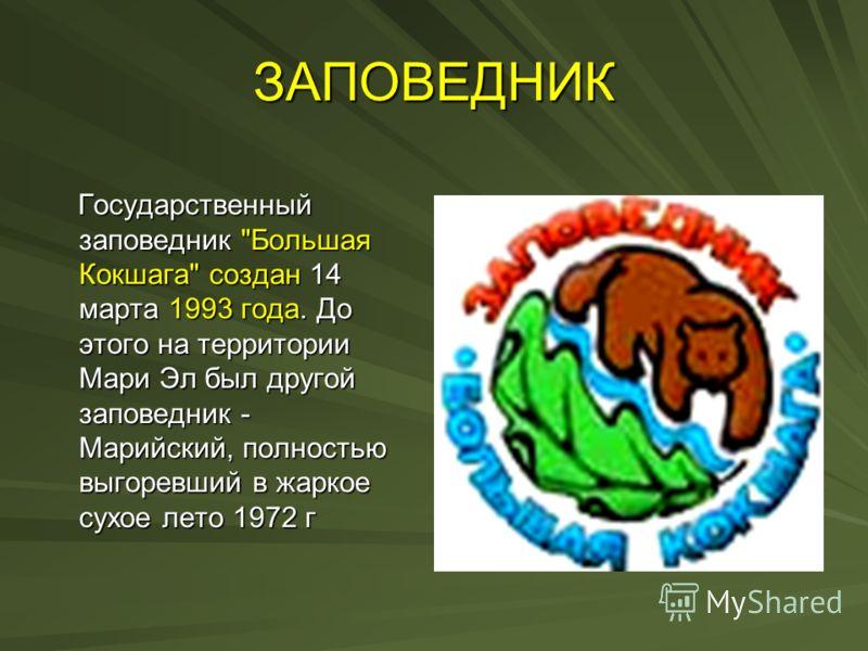ЗАПОВЕДНИК Государственный заповедник
