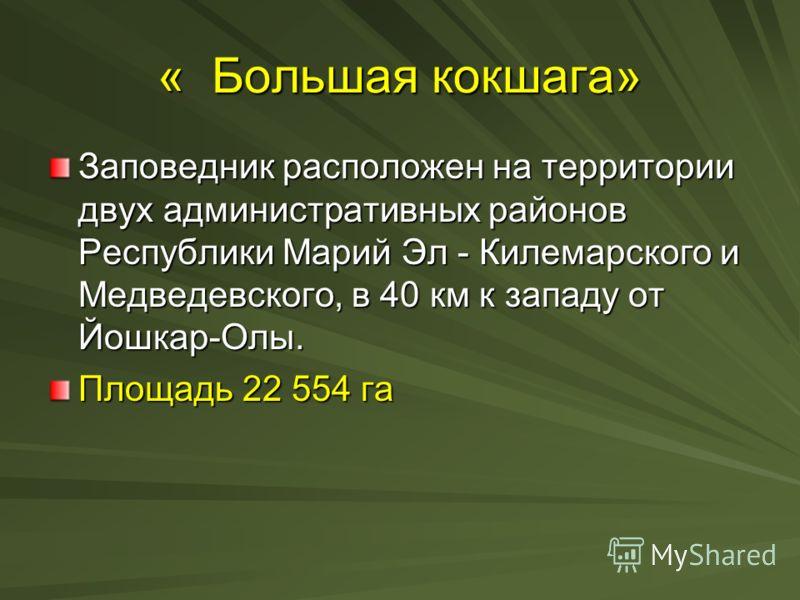 « Большая кокшага» Заповедник расположен на территории двух административных районов Республики Марий Эл - Килемарского и Медведевского, в 40 км к западу от Йошкар-Олы. Площадь 22 554 га