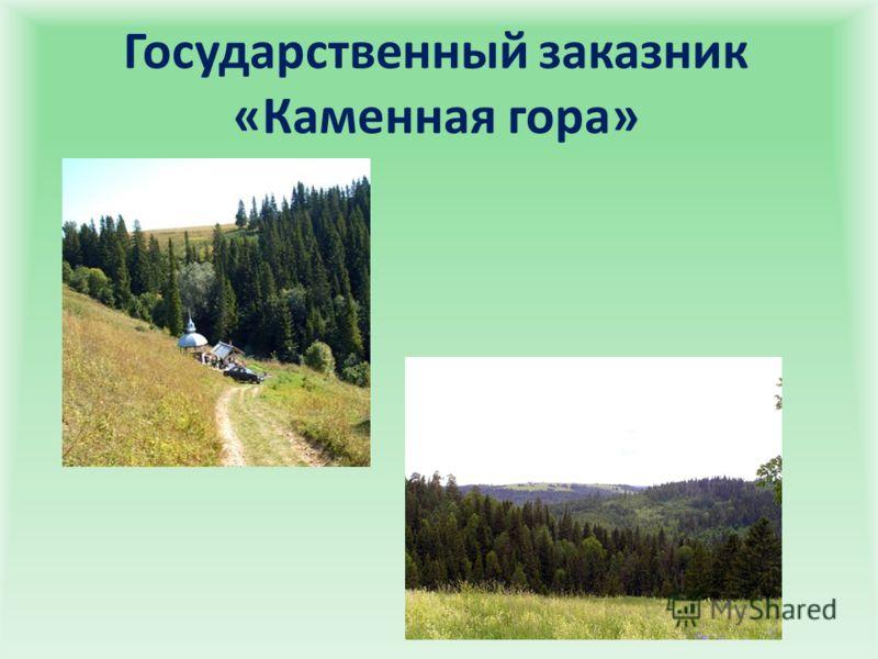 Государственный заказник «Каменная гора»