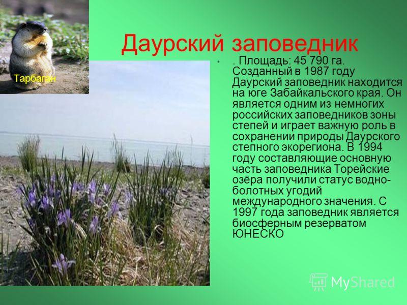 Даурский заповедник. Площадь: 45 790 га. Созданный в 1987 году Даурский заповедник находится на юге Забайкальского края. Он является одним из немногих российских заповедников зоны степей и играет важную роль в сохранении природы Даурского степного эк