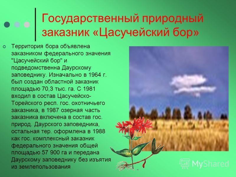 Государственный природный заказник «Цасучейский бор» Территория бора объявлена заказником федерального значения