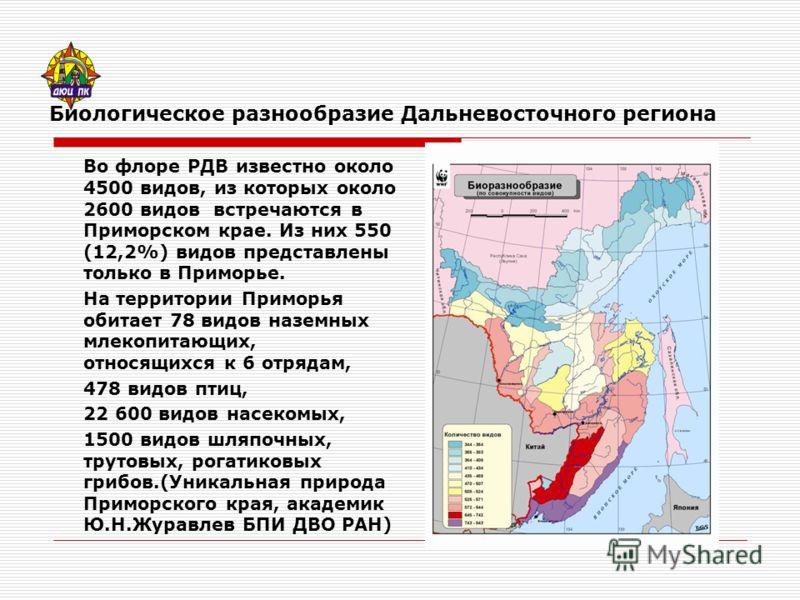 Биологическое разнообразие Дальневосточного региона Во флоре РДВ известно около 4500 видов, из которых около 2600 видов встречаются в Приморском крае. Из них 550 (12,2%) видов представлены только в Приморье. На территории Приморья обитает 78 видов на