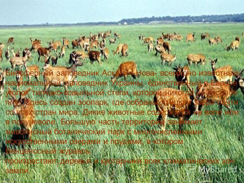 Биосферный заповедник Аскания-Нова- всемирно известный национальный заповедник Украины, единственный в Европе уголок типчако-ковыльной степи, которой никогда не касался плуг. Здесь создан зоопарк, где собраны птицы и звери почти со всех стран мира. Д