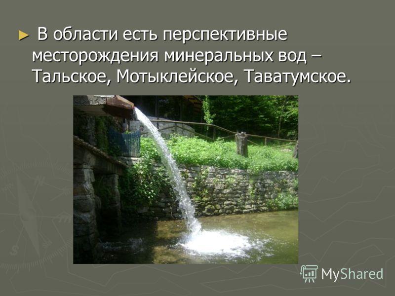 В области есть перспективные месторождения минеральных вод – Тальское, Мотыклейское, Таватумское. В области есть перспективные месторождения минеральных вод – Тальское, Мотыклейское, Таватумское.