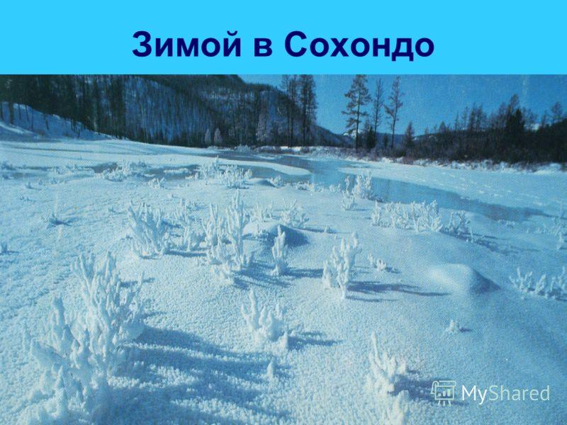 Зимой в Сохондо