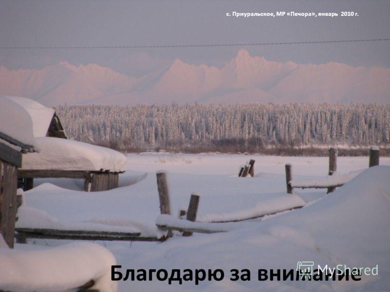 Благодарю за внимание с. Приуральское, МР «Печора», январь 2010 г.