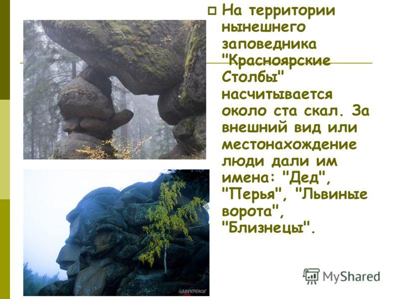 На территории нынешнего заповедника Красноярские Столбы насчитывается около ста скал. За внешний вид или местонахождение люди дали им имена: Дед, Перья, Львиные ворота, Близнецы.