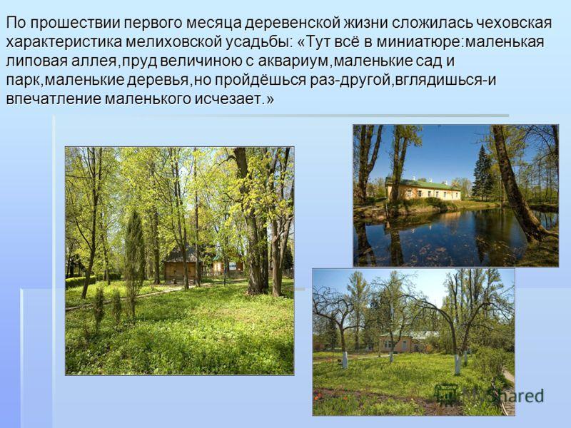 По прошествии первого месяца деревенской жизни сложилась чеховская характеристика мелиховской усадьбы: «Тут всё в миниатюре:маленькая липовая аллея,пруд величиною с аквариум,маленькие сад и парк,маленькие деревья,но пройдёшься раз-другой,вглядишься-и