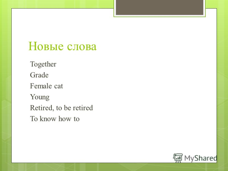 Новые слова Together Grade Female cat Young Retired, to be retired To know how to