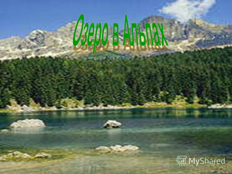Естественные водоемы: Река Река Озеро Озеро Море Море Океан Океан Ручей Ручей назад