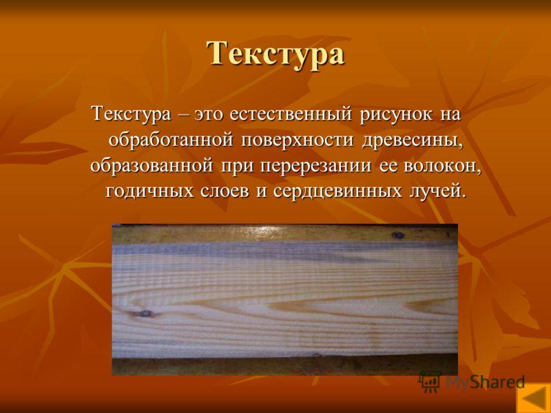 Текстура Текстура – это естественный рисунок на обработанной поверхности древесины, образованной при перерезании ее волокон, годичных слоев и сердцевинных лучей.