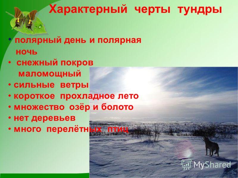 Характерный черты тундры полярный день и полярная ночь снежный покров маломощный сильные ветры короткое прохладное лето множество озёр и болото нет деревьев много перелётных птиц