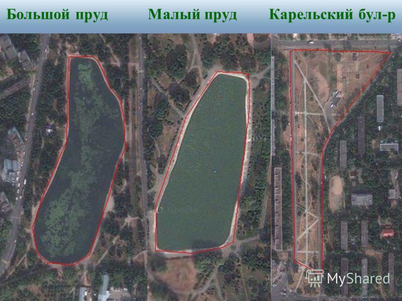 Большой пруд Малый пруд Карельский бул-р
