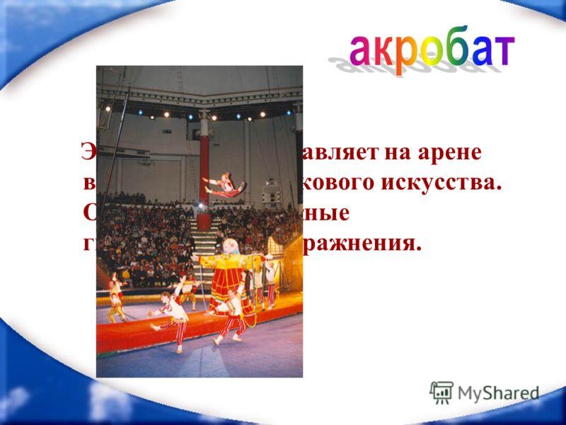 Этот артист представляет на арене виды спорта и циркового искусства. Он исполняет сложные гимнастические упражнения.