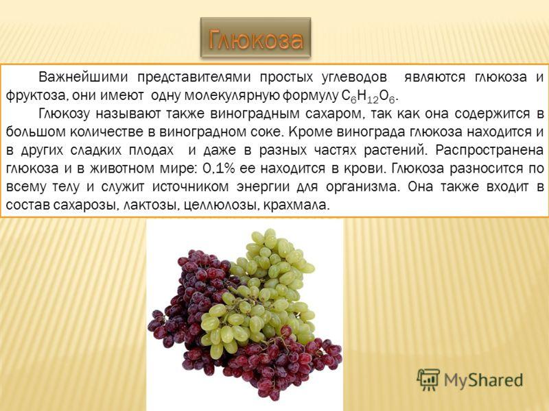 Важнейшими представителями простых углеводов являются глюкоза и фруктоза, они имеют одну молекулярную формулу С 6 Н 12 О 6. Глюкозу называют также виноградным сахаром, так как она содержится в большом количестве в виноградном соке. Кроме винограда гл