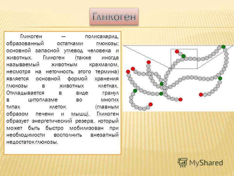 Гликоген полисахарид, образованный остатками глюкозы; основной запасной углевод человека и животных. Гликоген (также иногда называемый животным крахмалом, несмотря на неточность этого термина) является основной формой хранения глюкозы в животных клет