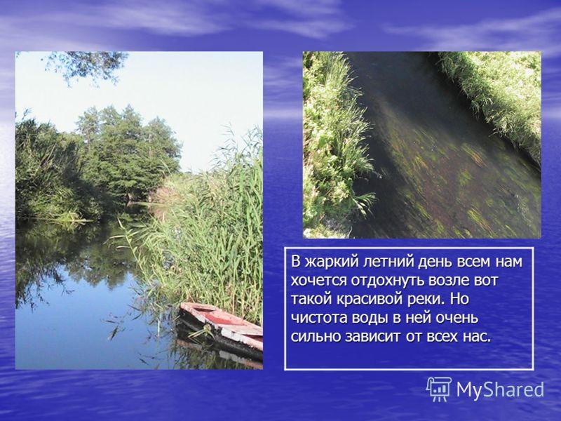 В жаркий летний день всем нам хочется отдохнуть возле вот такой красивой реки. Но чистота воды в ней очень сильно зависит от всех нас.