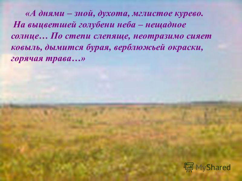 «А днями – зной, духота, мглистое курево. На выцветшей голубени неба – нещадное солнце… По степи слепяще, неотразимо сияет ковыль, дымится бурая, верблюжьей окраски, горячая трава…»