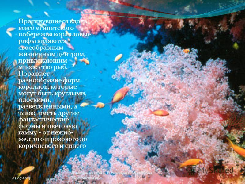 Протянувшиеся вдоль всего египетского побережья коралловые рифы являются своеобразным жизненным центром, привлекающим множество рыб. Поражает разнообразие форм кораллов, которые могут быть круглыми, плоскими, разветвленными, а также иметь другие фант