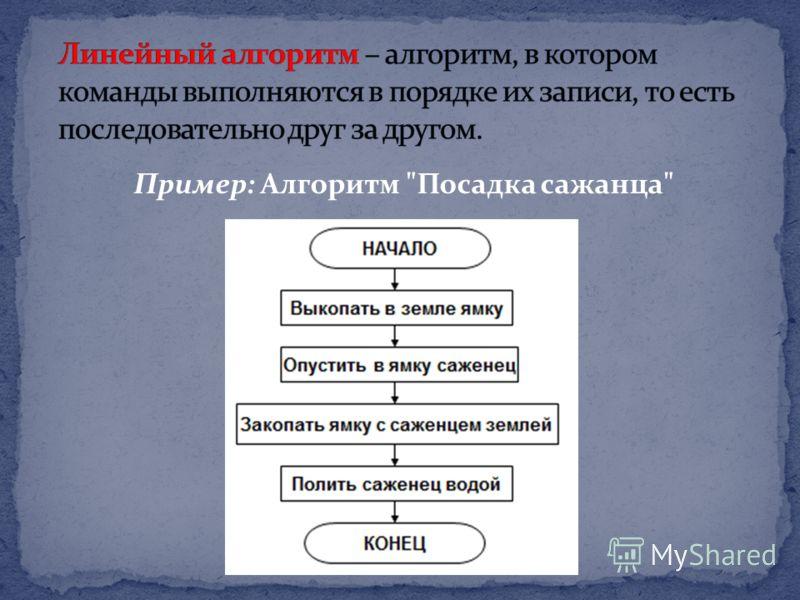 Пример: Алгоритм Посадка сажанца