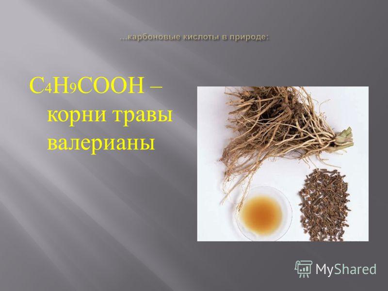 С 4 Н 9 СООН – корни травы валерианы
