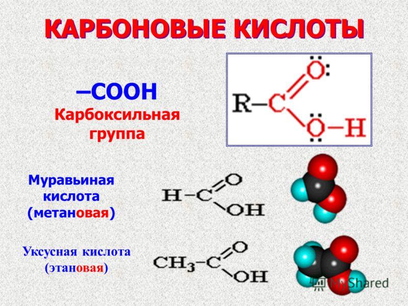 КАРБОНОВЫЕ КИСЛОТЫ –COOH Карбоксильная группа Муравьиная кислота (метановая) Уксусная кислота (этановая)