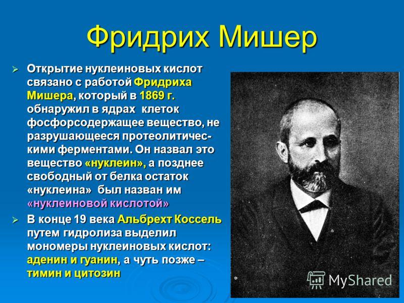 Фридрих Мишер Открытие нуклеиновых кислот связано с работой Фридриха Мишера, который в 1869 г. обнаружил в ядрах клеток фосфорсодержащее вещество, не разрушающееся протеолитичес- кими ферментами. Он назвал это вещество «нуклеин», а позднее свободный