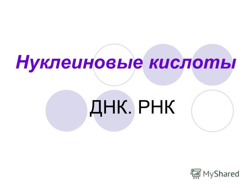 Нуклеиновые кислоты ДНК. РНК