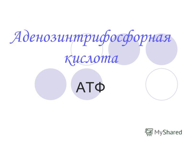Аденозинтрифосфорная кислота АТФ