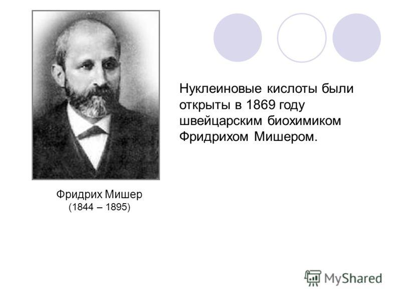 Нуклеиновые кислоты были открыты в 1869 году швейцарским биохимиком Фридрихом Мишером. Фридрих Мишер (1844 – 1895)