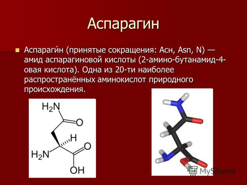 Аспарагин Аспараги́н (принятые сокращения: Асн, Asn, N) амид аспарагиновой кислоты (2-амино-бутанамид-4- овая кислота). Одна из 20-ти наиболее распространённых аминокислот природного происхождения. Аспараги́н (принятые сокращения: Асн, Asn, N) амид а