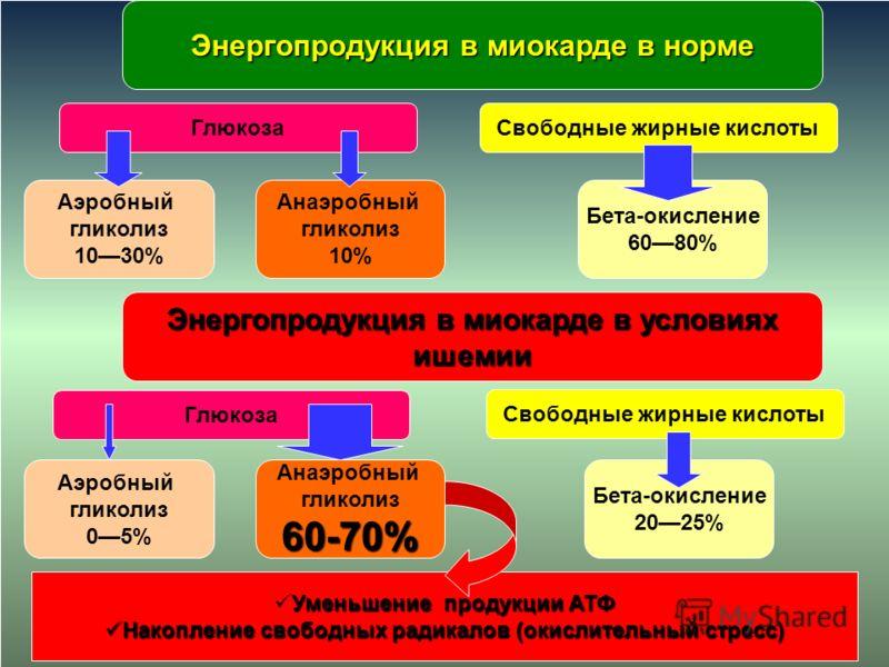 Энергопродукция в миокарде в норме ГлюкозаСвободные жирные кислоты Аэробный гликолиз 1030% Анаэробный гликолиз 10% Бета-окисление 6080% Энергопродукция в миокарде в условиях ишемии Глюкоза Аэробный гликолиз 05% Анаэробный гликолиз60-70% Бета-окислени