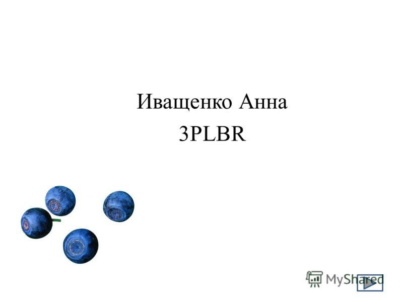 Иващенко Анна 3PLBR