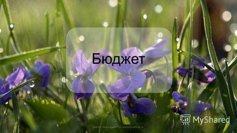 Бюджет автор: Кирюшина А.А. www.kirushina.ru1