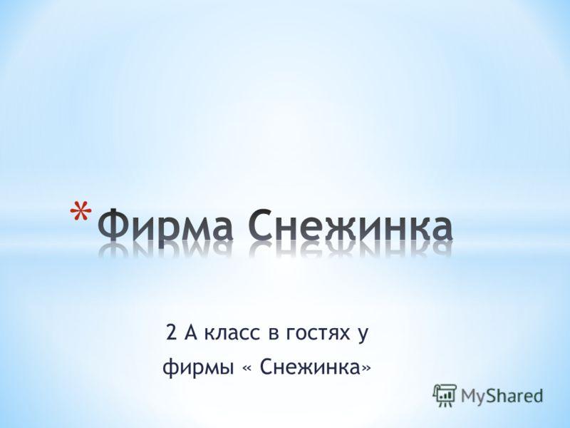 2 А класс в гостях у фирмы « Снежинка»