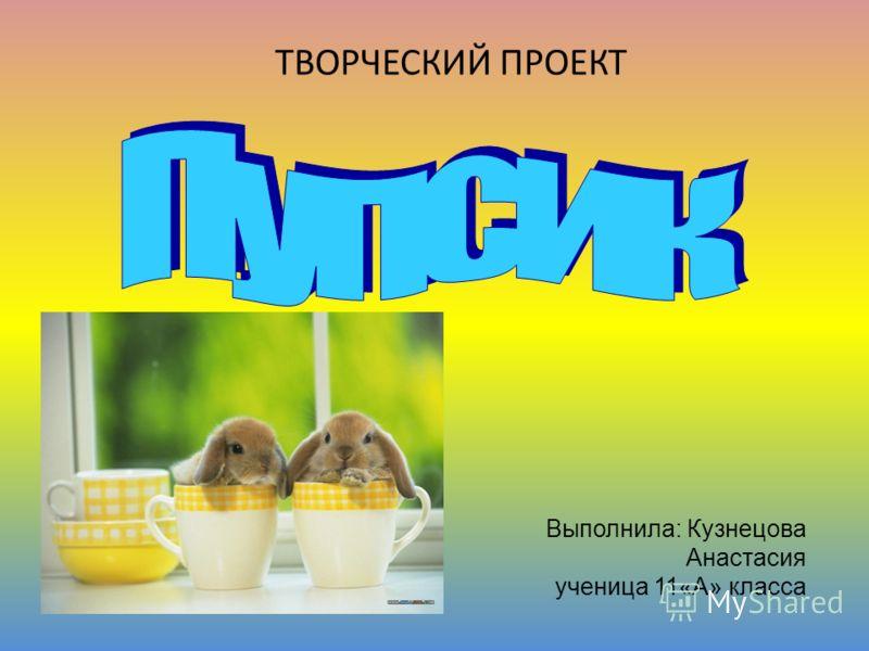 Выполнила: Кузнецова Анастасия ученица 11«А» класса ТВОРЧЕСКИЙ ПРОЕКТ