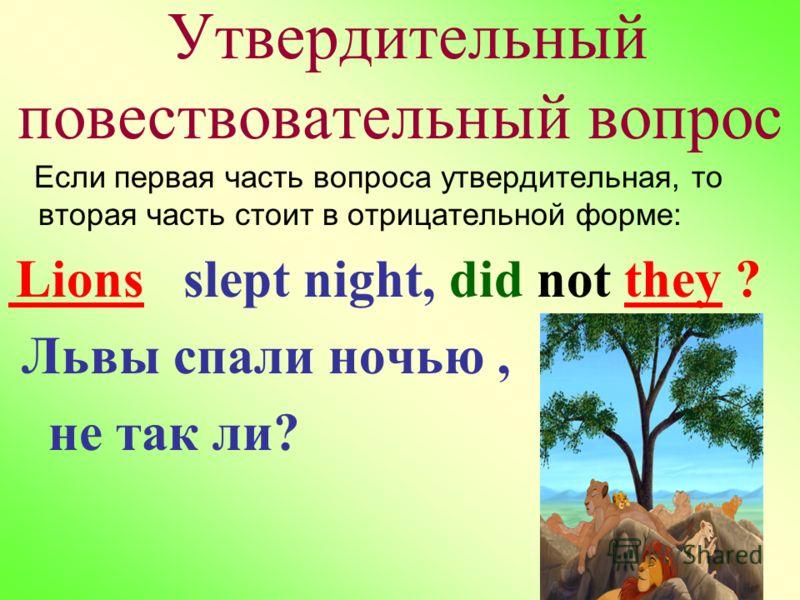 Утвердительный повествовательный вопрос Если первая часть вопроса утвердительная, то вторая часть стоит в отрицательной форме: Lions slept night, did not they ? Львы спали ночью, не так ли?