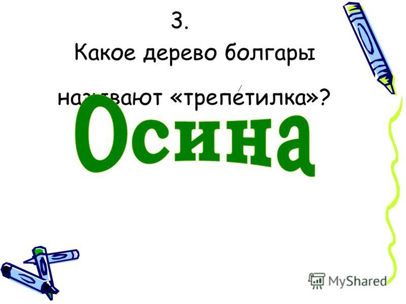 3. Какое дерево болгары называют «трепетилка»?
