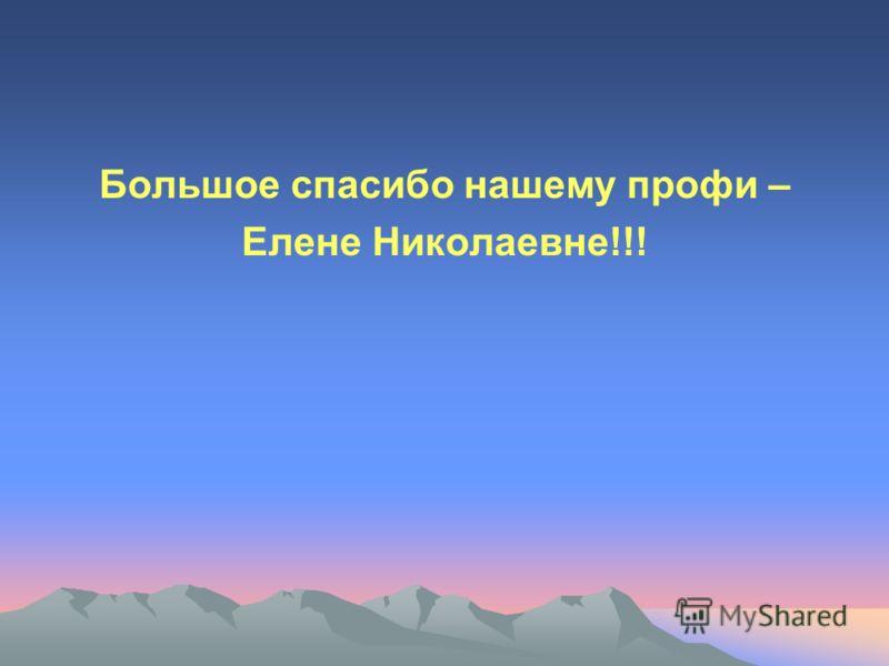Большое спасибо нашему профи – Елене Николаевне!!!