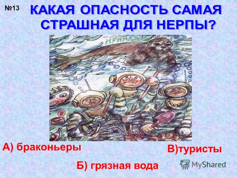 13 А) браконьеры Б) грязная вода В)туристы