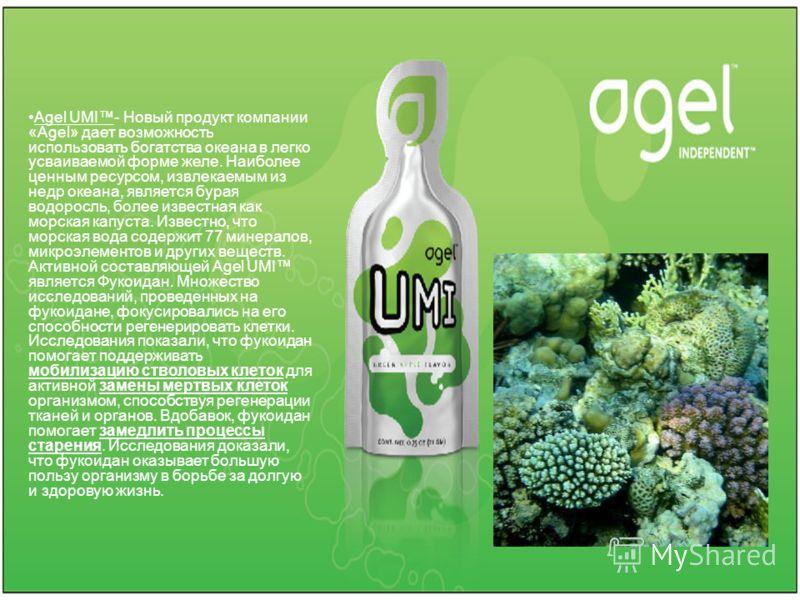 Agel UMI- Новый продукт компании «Agel» дает возможность использовать богатства океана в легко усваиваемой форме желе. Наиболее ценным ресурсом, извлекаемым из недр океана, является бурая водоросль, более известная как морская капуста. Известно, что