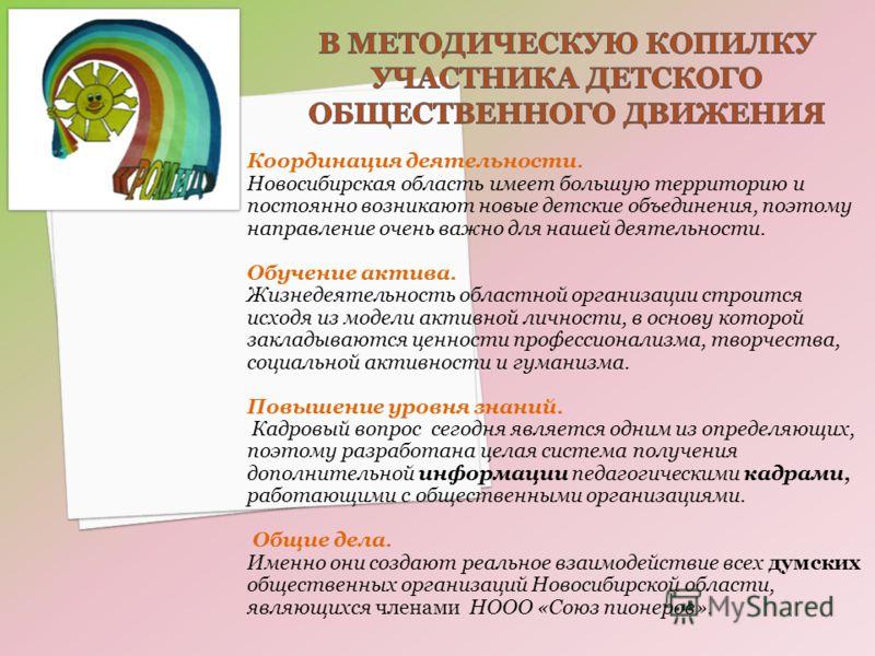 Координация деятельности. Новосибирская область имеет большую территорию и постоянно возникают новые детские объединения, поэтому направление очень важно для нашей деятельности. Обучение актива. Жизнедеятельность областной организации строится исходя