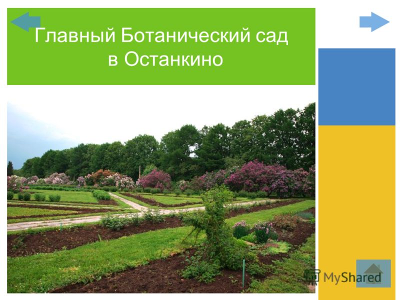 Главный Ботанический сад в Останкино